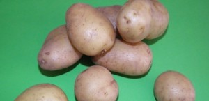 De hele aardappel