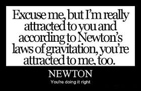 Newton's laws in the social sciences