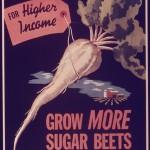 Grow_More_Sugar_Beets