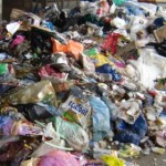 Municipal Solid Waste (MSW) is a ubiquitous feedstock.