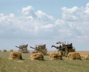 Landbouw in de Oekraïne