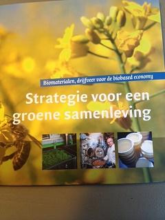 Strategie voor een groene samenleving
