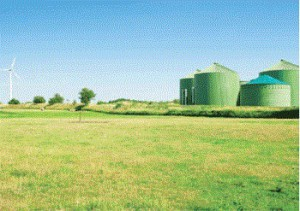 Grass biorefinery