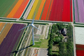 Wind turbine in Holland