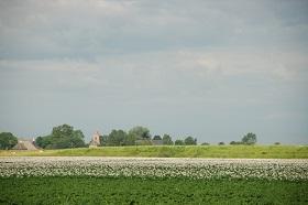 Groningen platteland