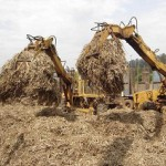 What is biomass anyway?