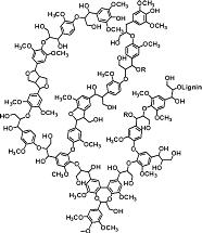 Lignin structure