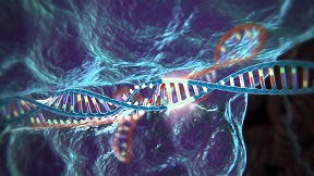 CRISPR-Cas gene technology