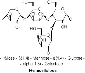 Hemicellulose