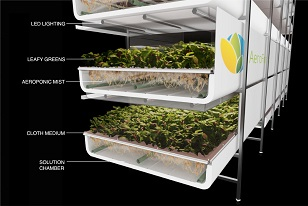 AeroFarms vertical farming