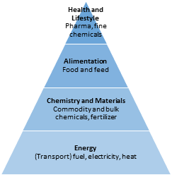 Biomass valorization pyramid