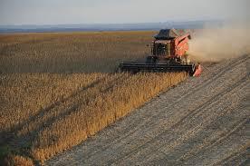 limits to biomass use