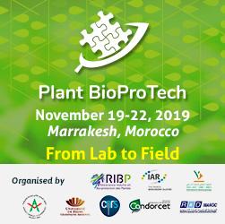 PHA: promising, versatile, biodegradable | Bio Based Press