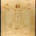 Leonardo da Vinci's beeld van de hele mens.