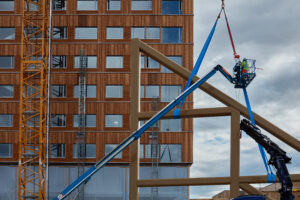 flat in mass timber