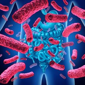 microbioom 2