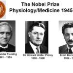 Nobelprijswinnars voor chemie, 945. Klik om te vergroten.