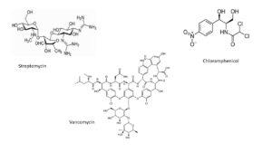 Streptomycin, vancomycin, chloramphenicol